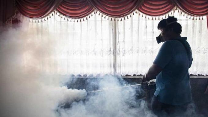 WHO Cabut Status Darutat Internasional Terhadap Virus Zika