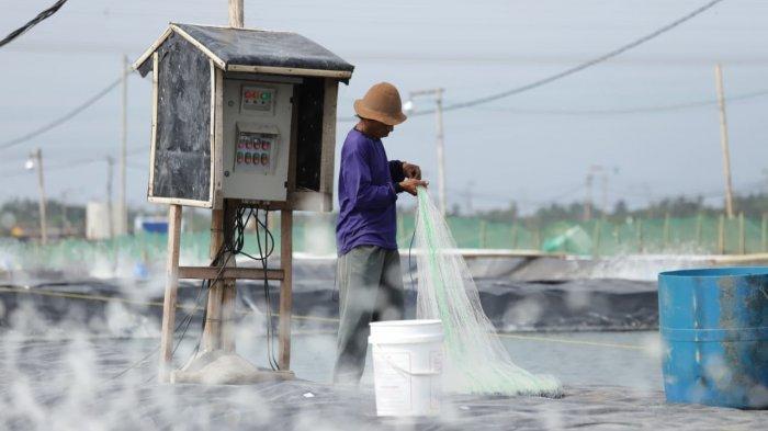 Perangi Stunting, KKP Gencar Bagikan Paket Ikan Olahan ke 112 Kabupaten/Kota