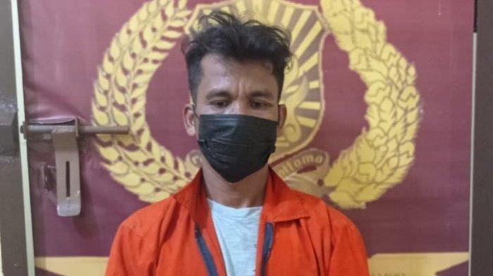 Pria di Samosir Rudapaksa Remaja Keterbelakangan Mental, Berawal dari Papasan di Pintu