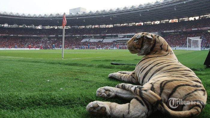 Final Piala Indonesia Persija vs PSM dihelat di SUGBK, Berikut Cara Pembelian Tiket dan Harganya