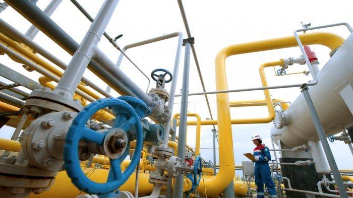 Terapkan ESG Framework, Pertamina Pionir Transisi Energi Indonesia