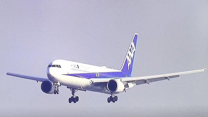 Pesawat charter pemerintah Jepang, ANA, mendarat di Bandara Haneda setelah menjemput warga Jepang di Wuhan 7 Februari 2020