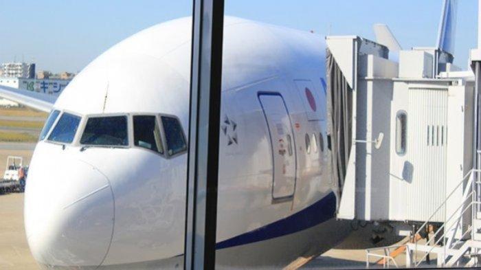 Gelombang Ketiga Covid-19 di Jepang, Jumlah Penumpang Penerbangan Domestik Menurun Drastis