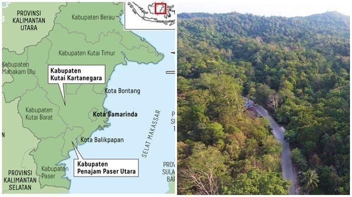 Ibu Kota Negara Baru Bukan Prioritas sampai 2021, Sri Mulyani: Tak Ada Belanja Pengeluaran IKN
