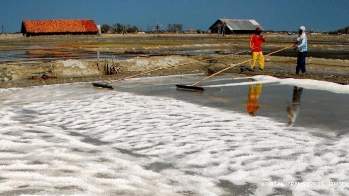 Bila Dikembangkan, Garam NTT Bisa Gantikan Impor