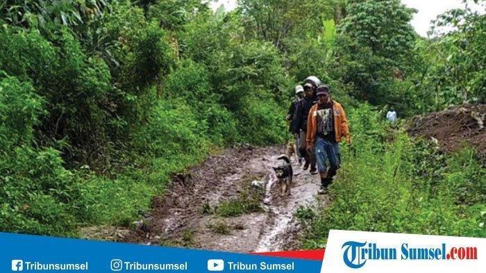 Enam orang petani yang sempat tak berani keluar pondok karena ketakutan melihat harimau diantaranya Nupis (42) , Diliadi (50) , Pingki (21), Jumadi (45) , Neus ( 42) , Jimi (40) akhirnya berhasil dievakuasi oleh tim gabungan.