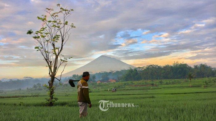 Jawa Tengah Jadi Satu-satunya Provinsi di Pulau Jawa dengan Biaya Hidup Paling Rendah di Indonesia