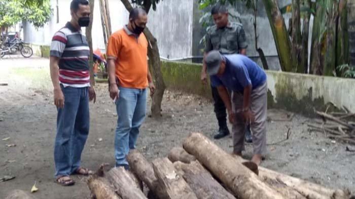 Niat Perbaiki Rumah, Seorang Petani Malah Masuk Penjara, Nekat Potong Kayu Jati Perhutani