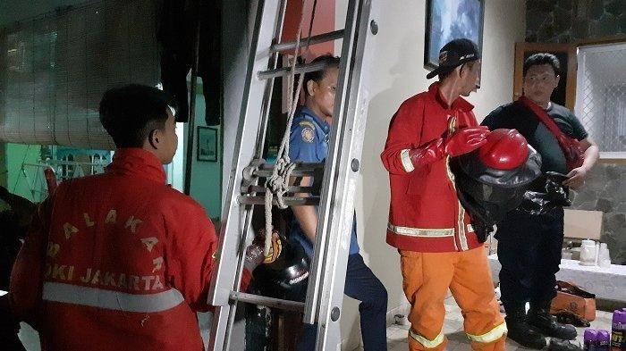 Bahayakan Warga, Damkar Bekasi Pindah 8 Sarang Tawon Vespa