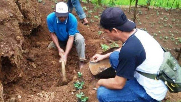 Petani Temukan Kerangka Manusia di Lokasi Longsor di Brebes Tahun Lalu