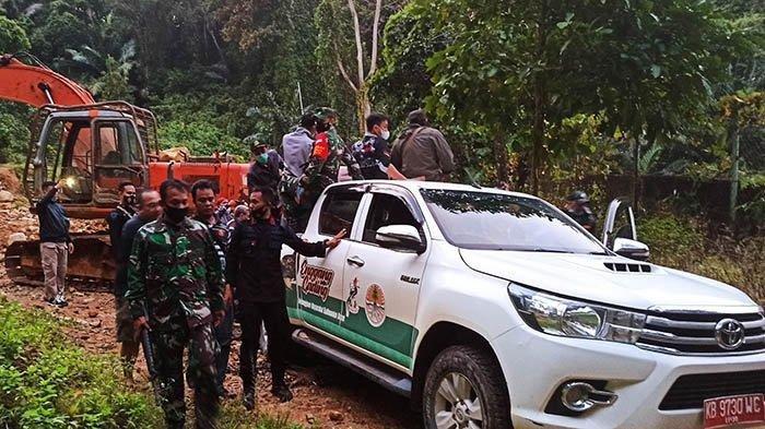 Petugas mengangkut harimau bernama Tora (TRIBUNPONTIANAK/Rizki Kurnia)