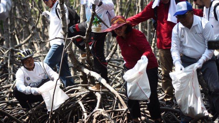 Penanggulangan Tumpahan Minyak Selesai, PHE Pulihkan Lingkungan di Kepulauan Seribu