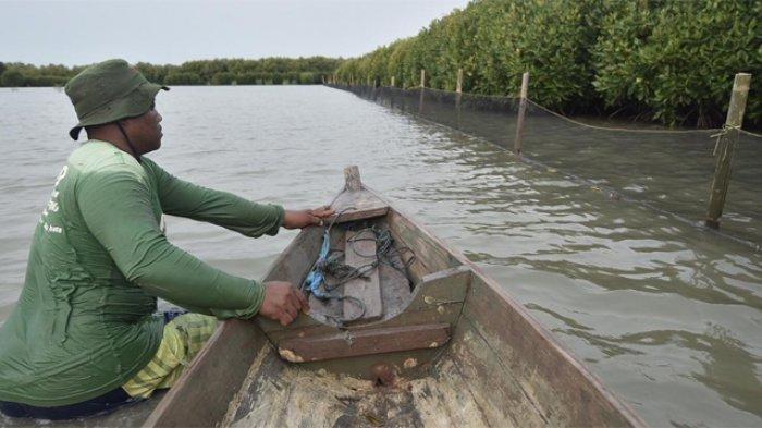 PHE ONWJ mengembangkan proteksi dengan inovasi waring yang difungsikan sebagai OSRE (oil spill response equipment).