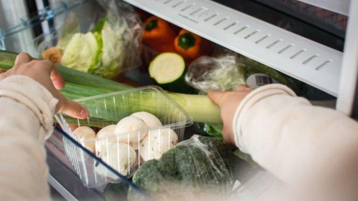 Cegah agar Tidak Cepat Rusak, 6 Langkah Membersihkan Kulkas yang Tepat