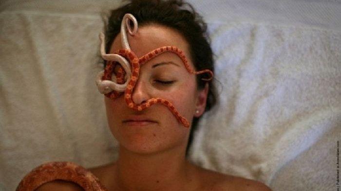 5 Perawatan Kecantikan Aneh di Dunia, Dari Pijat Ular Hingga Facial Siput