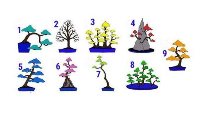 Pilih satu pohon!
