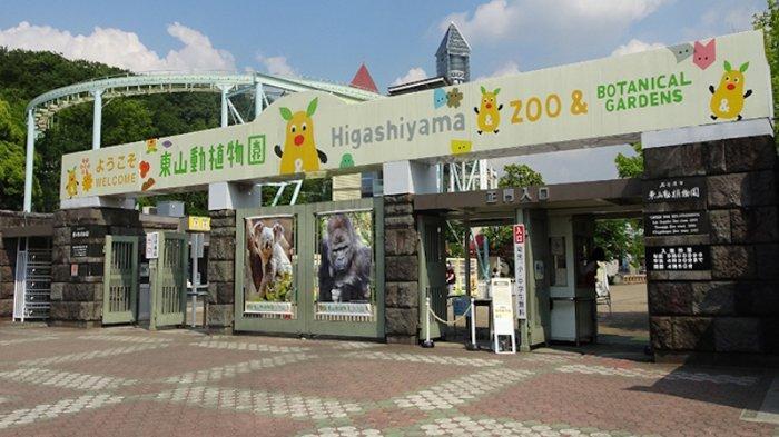Uang di Brankas Kebun Binatang Nagoya Jepang Hilang 15 Juta Yen
