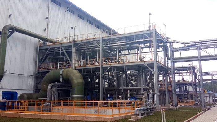 Komisi VI Dukung PGE Jadi Induk Holding BUMN Geothermal