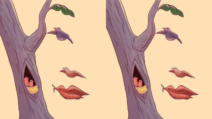 Tes Kepribadian: Pohon dan Burung atau Wajah? Jawabanmu Akan Ungkap Kisah Cintamu