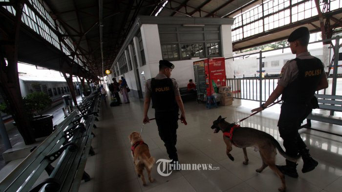 Anjing K9 Dikirim ke Hutan Tenjo, Percepat Penangkapan Terpidana Mati Cai Changpan