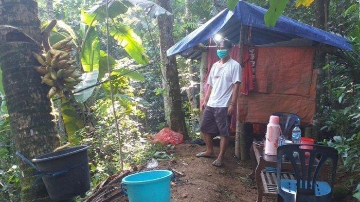 Poniran yang sedang melakukan isolasi mandiri di sebuah gubuk bambu