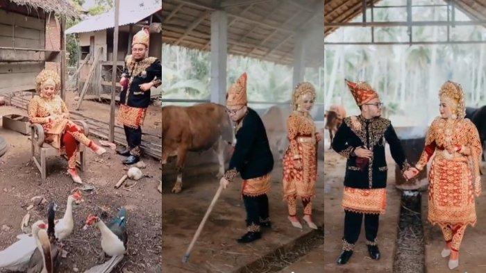 VIRAL Calon Pengantin Foto Prewedding di Kandang Bebek dan Sapi, Ternyata Begini Kisah di Baliknya