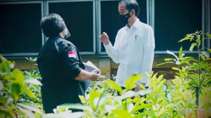Tinjau Proyek Nursery di Bogor, Presiden Jokowi Ingin Kembangkan Green Economy