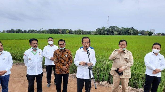 Presiden Joko Widodo (Jokowi)saat meninjau lokasi Food Estate di Belanti Siam, Kecamatan Pandih Batu, Kabupaten Pulang Pisau, Kalimantan Tengah, Kamis (9/7/2020).