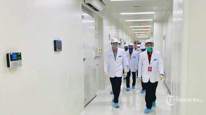 Presiden Joko Widodo (kiri) tiba di PT Bio Farma (Persero) Bandung untuk meninjau fasilitas produksi dan pengemasan vaksin Covid-19, di Kota Bandung, Jawa Barat, Selasa (11/8/2020) pagi sekitar pukul 09.45 WIB. Peninjauan dipandu oleh Direktur Utama PT Bio Farma (Persero), Honesti Basyir. Dalam kunjungannya tersebut, Presiden Jokowi didampingi antara lain oleh Menteri Badan Usaha Milik Negara (BUMN), Erick Thohir. Tribunnews/HO/BPMI Setpres