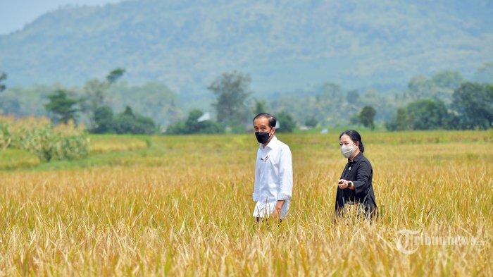 Pertanian Harus Menjadi Magnet Lapangan Pekerjaan Bagi Generasi Muda