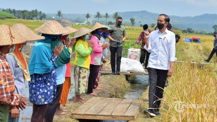 Pertanggungan Asuransi Bisa Dimanfaatkan Petani di Karangasem