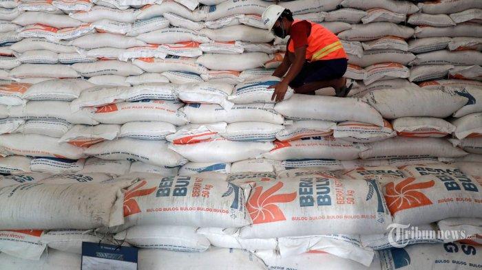 Pekerja menata karung berisi beras di Gudang Bulog Kanwil DKI dan Banten, Kelapa Gading, Jakarta Utara, Kamis (18/3/2021). Perum Bulog memprioritaskan pengadaan beras dari produksi dalam negeri dengan target 500.000 ton dalam tiga bulan ke depan. Tribunnews/Irwan Rismawan