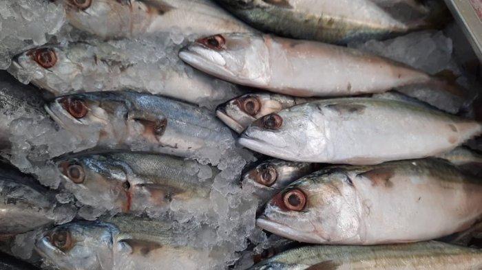 Terbaru, KKP Jaga Jaminan Mutu Produk Ekspor Perikanan Indonesia