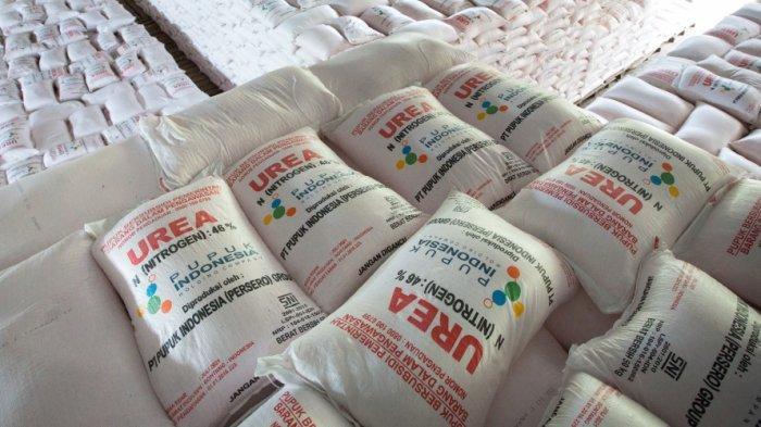 Cara Pupuk Indonesia Permudah Akses Petani Terhadap Produk Berkualitas
