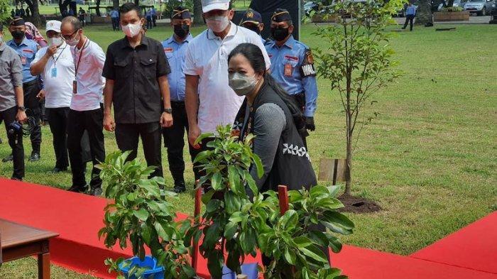 Peringati Hari Bumi Sedunia,Puan Maharani: Planet yang Sehat Bukanlah Pilihan, Melainkan Kebutuhan