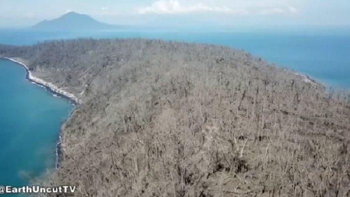 Terkena Semburan Awan Panas, Ini Kondisi Terkini Pulau Panjang Pasca Erupsi Gunung Anak Krakatau