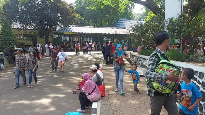 Siang Ini Sudah 118 Ribu Pengunjung Padati Ragunan
