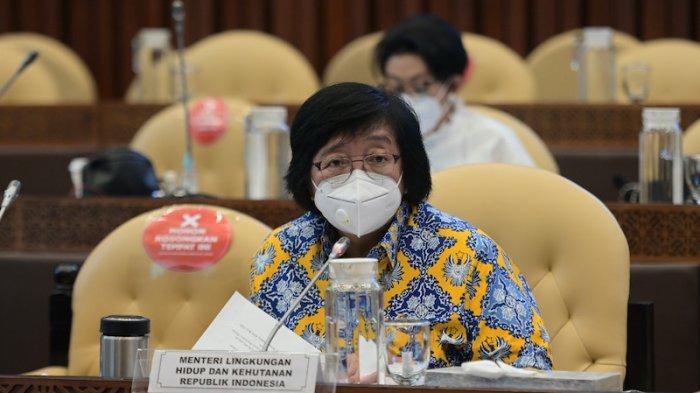 Respon Menteri LHK Siti Nurbaya Atas Dukungan Komisi IV untuk DAK Lingkungan