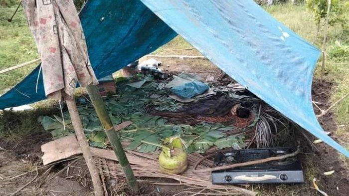 Korban Gempa di Mamuju yang Tinggal dalam Tenda Darurat Mulai Terserang Penyakit