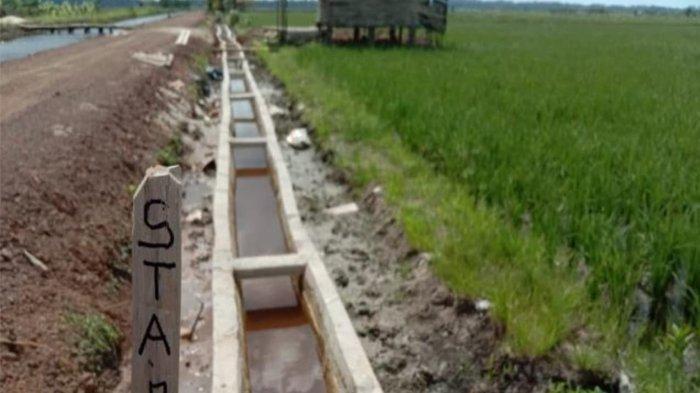 Pasokan Air Lancar Berkat RJIT, Produktivitas Petani Bangka Selatan Melonjak Dua Kali Lipat