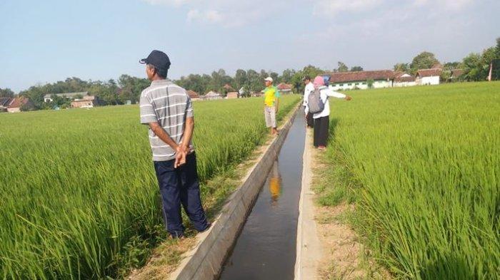 Dukung Aktivitas Pertanian, Kabupaten Karawang Gencarkan Program RJIT