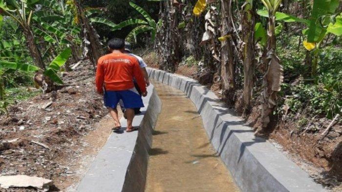 Kabupaten Cianjur Laksanakan Rehabilitasi Jaringan Irigasi Tersier untuk Tingkatkan Produktivitas