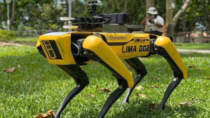 Ingatkan Warganya Soal Social Distancing, Singapura Hadirkan Robot Spot untuk Patroli