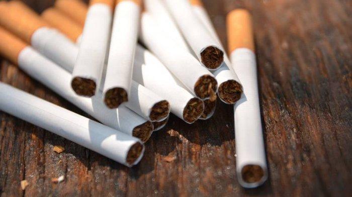 Simplifikasi Tarif Cukai Hasil Tembakau Dinilai Bisa Tekan Variasi Harga Rokok
