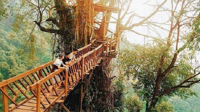 7 Tempat Wisata Alam di Sekitar Bogor, Cocok Dikunjungi saat Akhir Pekan
