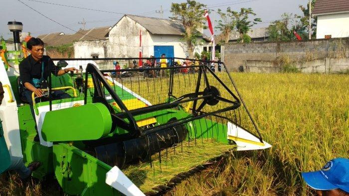 Menuju Pertanian 4.0, Kementan Gencar Modernisasikan Alsintan di Daerah