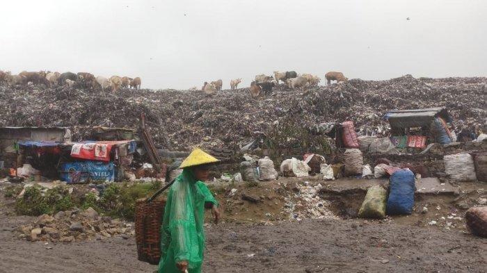 Daya Tampung TPST Piyungan Over Kapasitas dan Bau Sampahnya Tercium hingga Kotagede dan Banguntapan