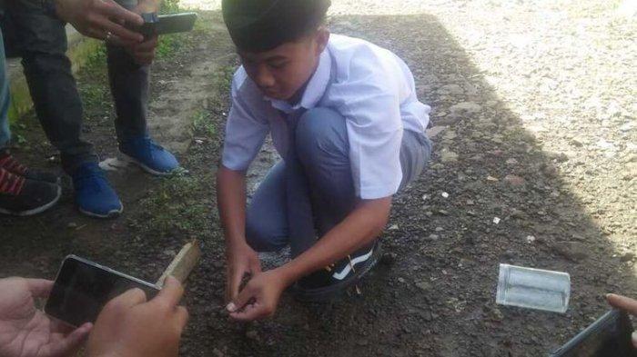 Santri Tangkap 17 Anak Ular Kobra yang Diduga Gigit Penjual Es Cendol Keliling di Tasikmalaya