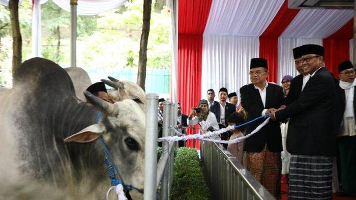 Jokowi, JK, Megawati Serahkan Kurban di Masjid Istiqlal