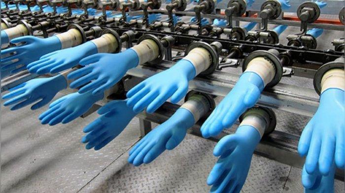 Perusahaan Sarung Tangan Malaysia Cari Patner Bangun Pabrik di Indonesia